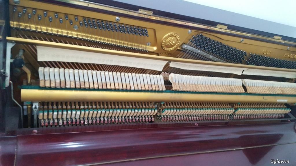ThanhLý Gấp Nhiều Đàn Piano Cơ/ Điện, Organ Nhật Giá Rẻ AE Mua Bán Lại - 11