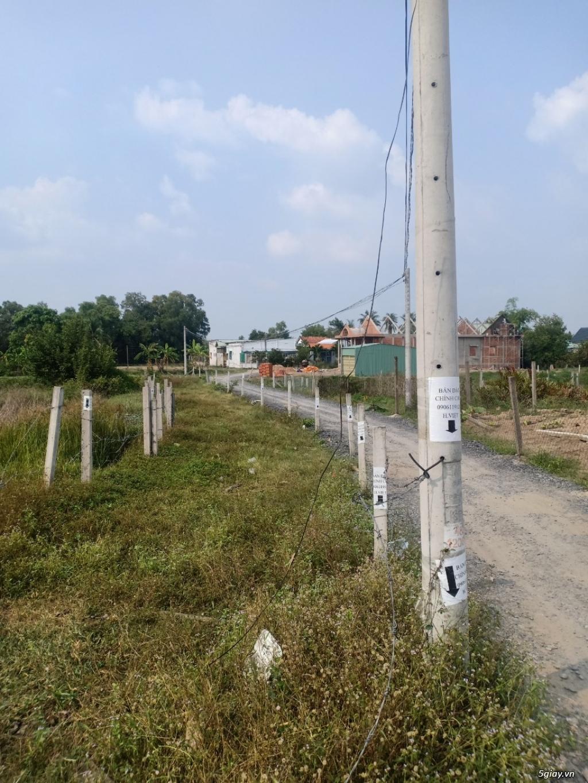 Bán đất DT835B 368m2, xã Phước Lý - Cần Giuộc - 2