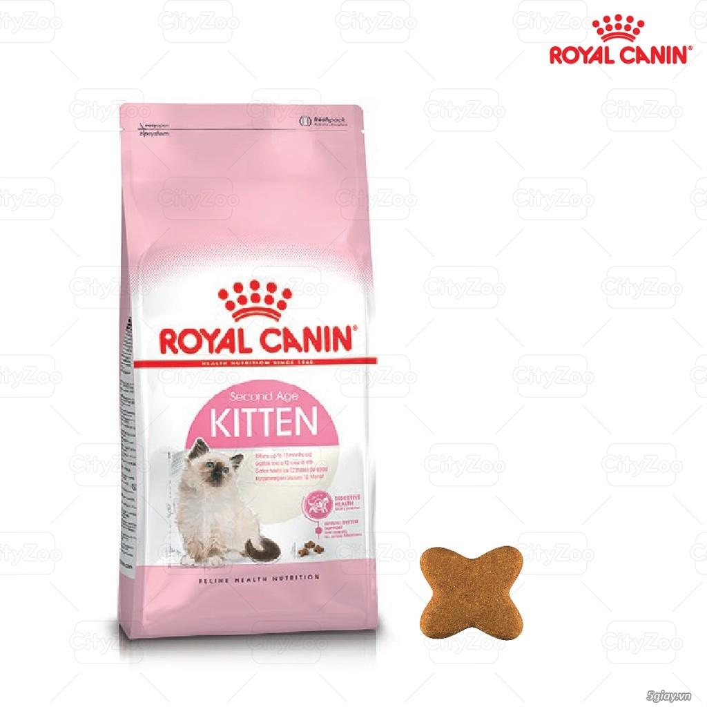Thức Ăn Cho Mèo Royal, Cat's Eye, Catsrang, Minino - Cát Vệ Sinh Mèo - 7