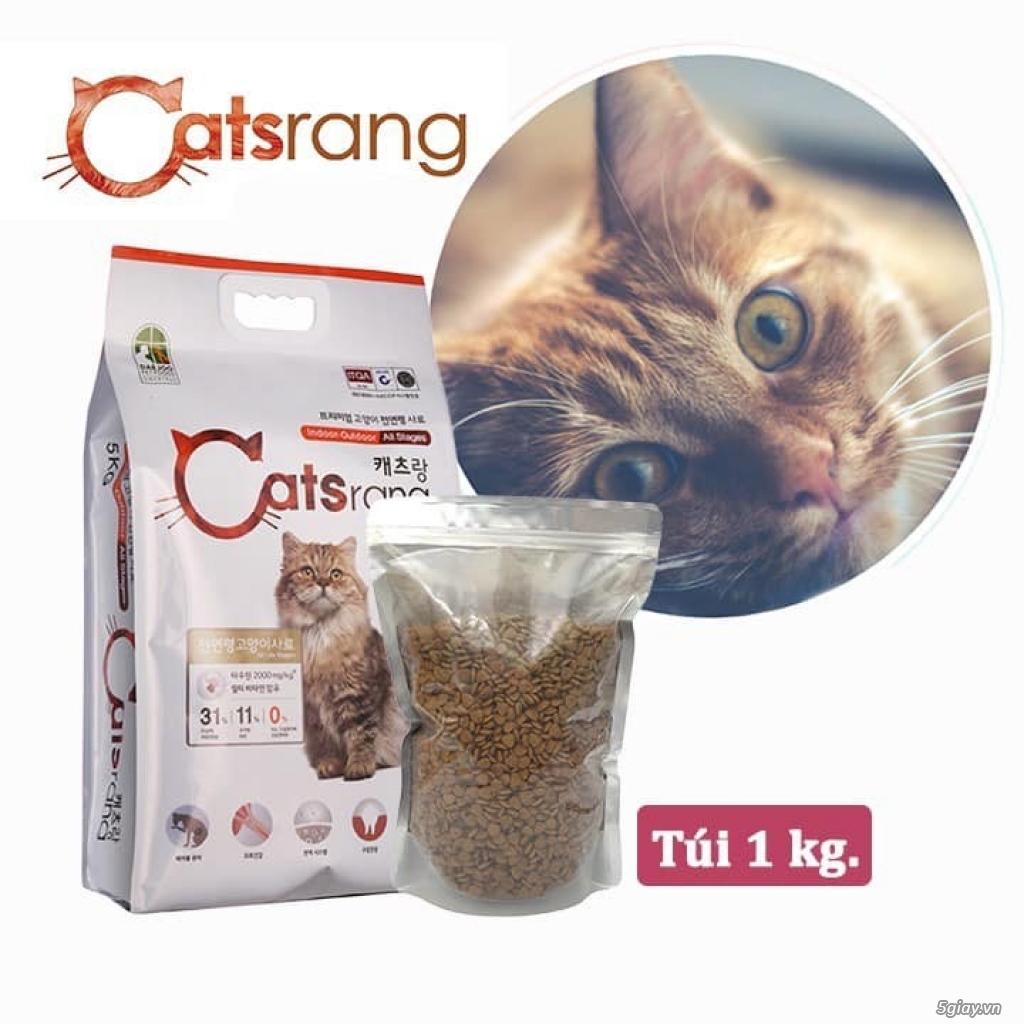 Thức Ăn Cho Mèo Royal, Cat's Eye, Catsrang, Minino - Cát Vệ Sinh Mèo - 3