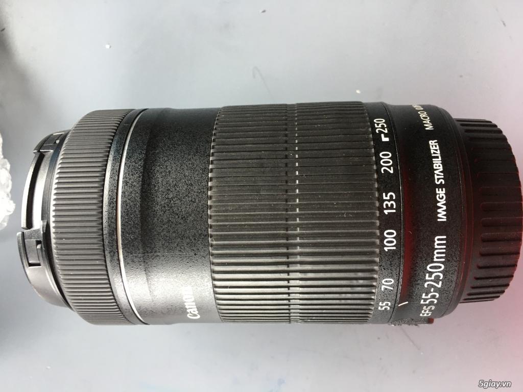 600D - 18 135 IS STM - 55 250 IS STM - 70 210 F4 - 3