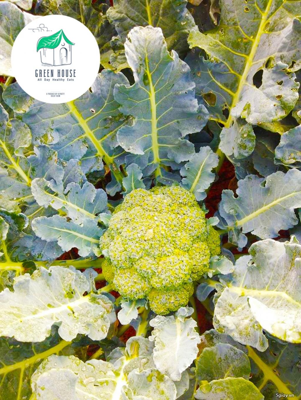 Healthy Green House: Rau - Củ - Quả (Sạch/Organic) & Suất Ăn Giảm Cân - 10