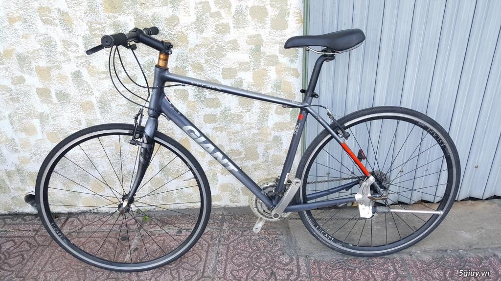 Xe đạp - Nhật - Anh - Pháp - Mỹ - Canada - Tây Ban Nha - Italia - Đức - 25