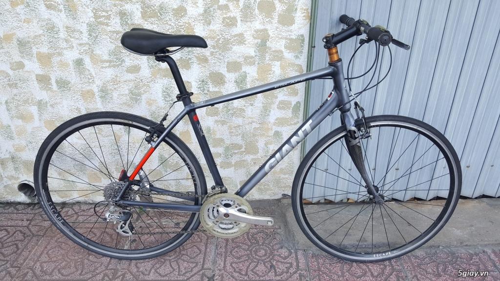 Xe đạp - Nhật - Anh - Pháp - Mỹ - Canada - Tây Ban Nha - Italia - Đức - 24