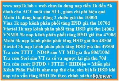Tạo TK nạp tiền ĐTDĐ + Game + Internet CK cao  - và web nạp 1k nuôi sim SLL - Auto cộng số 24/24 - 1