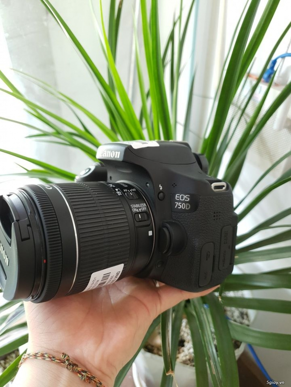 Combo Canon 750D + 18-55 STM - 2
