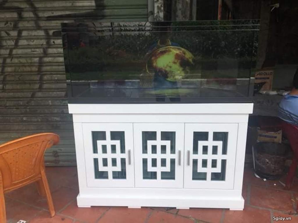 Chuyên Hồ Cá Cảnh, Hồ Thủy Sinh , Hồ cá rồng, Hồ Hải sản ..HCM - 24