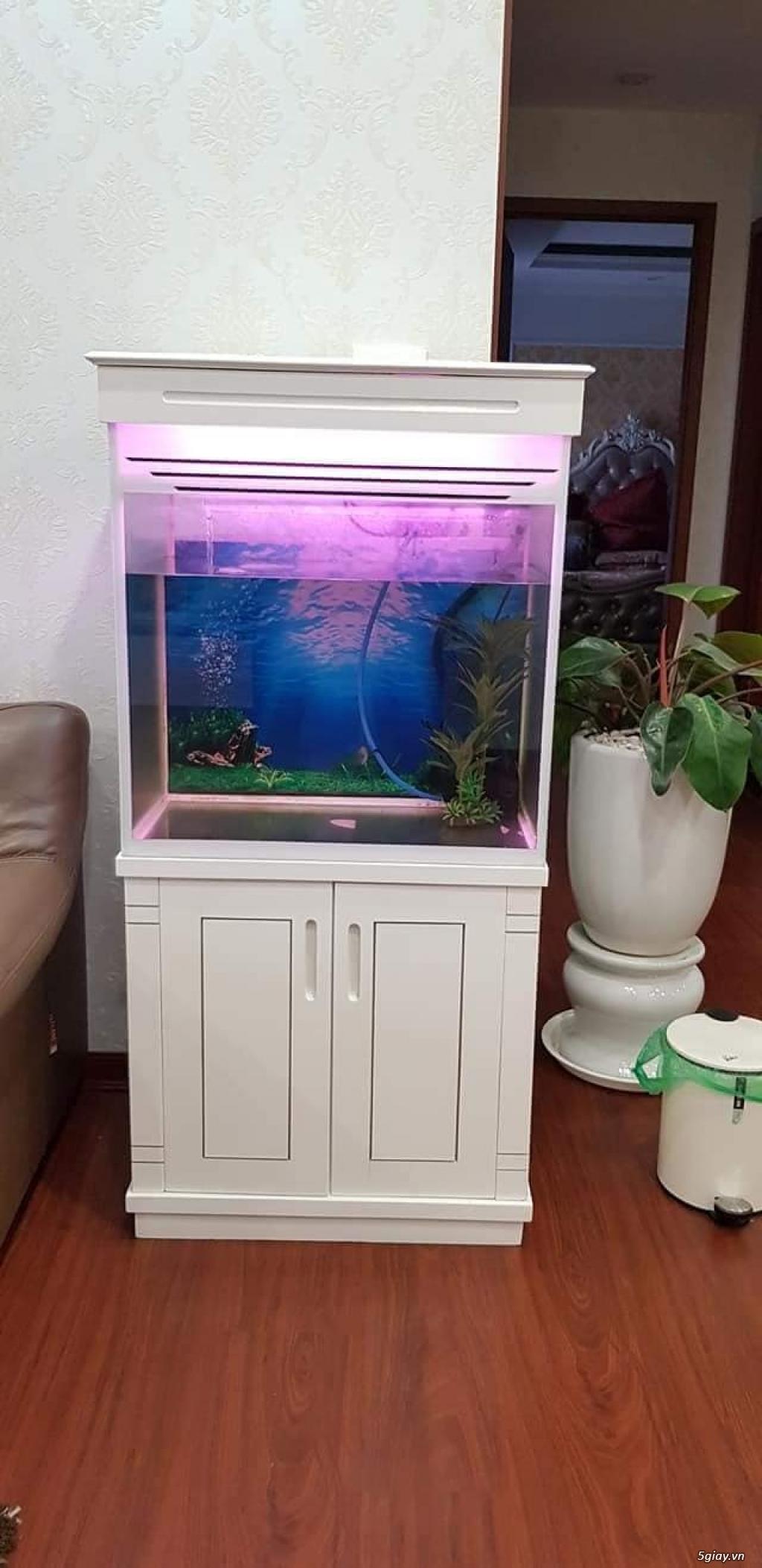 Chuyên Hồ Cá Cảnh, Hồ Thủy Sinh , Hồ cá rồng, Hồ Hải sản ..HCM - 27