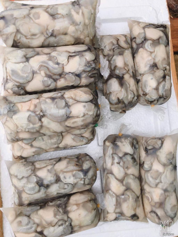 Ruột Hàu sữa Bình Định giá rẻ tại TP. HCM - 1