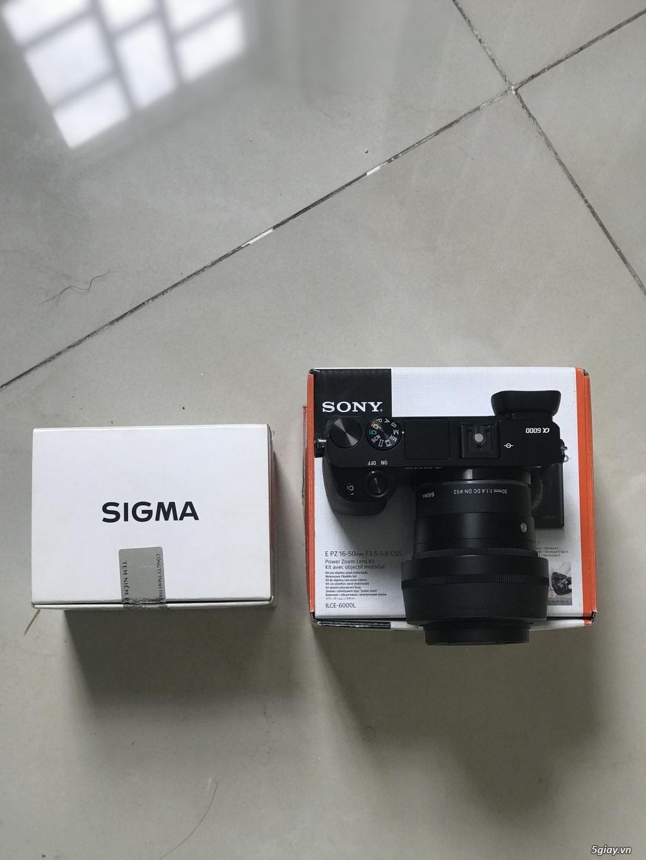 Sony alpha A6000+sigma 30F1.4 - 2