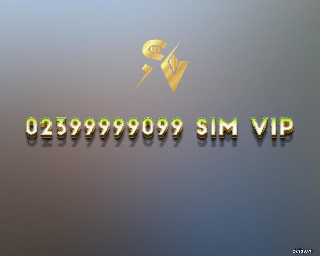 Số điện thoại bàn VIP gắn được trên cả điện thoại di động và máy bàn - 19