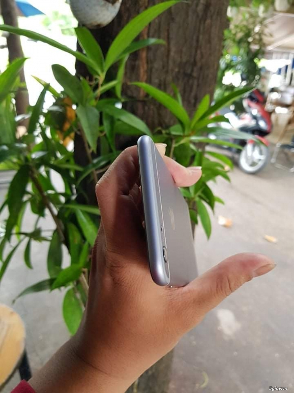 IPhone 6S plus 16G Silver - 1