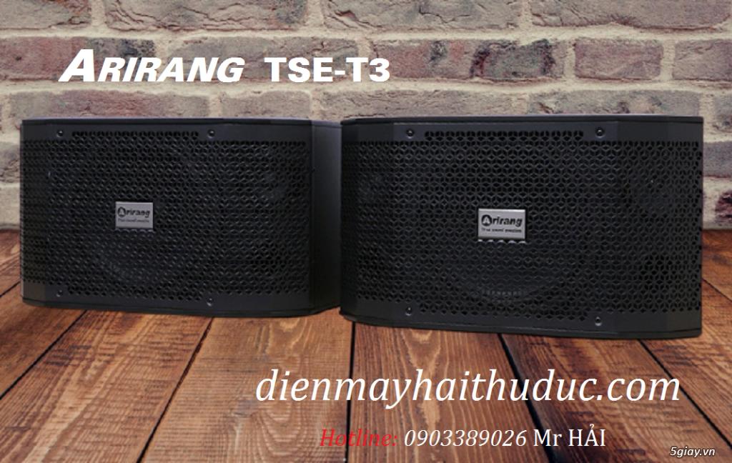 Loa Arirang TSE-T3 Model 2020 bảo hành chính hãng - 2