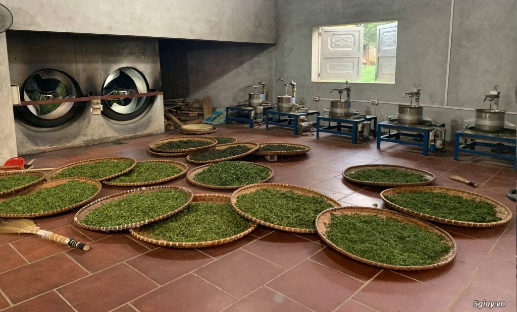 Trà Thái Nguyên 100% Nguyên chất, 150k/kg - 2
