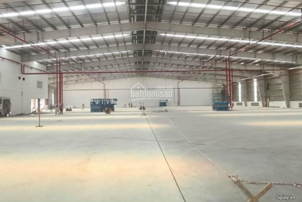 Cho thuê nhà xưởng ở huyện Cần Đước, Long An. LH: 0843630059
