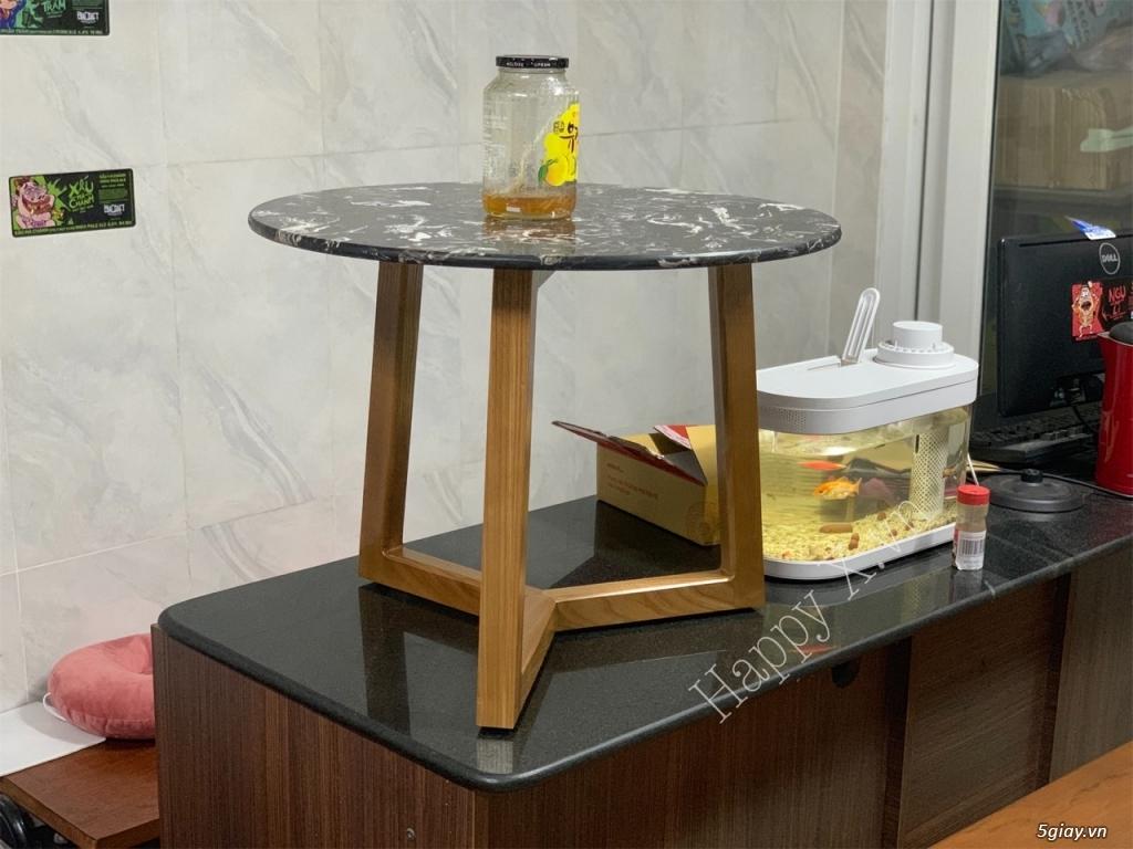 Chân bàn trà sofa gỗ Ash - 3
