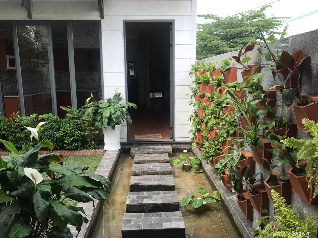 Cho thuê nhà rất đẹp khu dân cư Tân Đức tiện ở và kinh doanh - 11