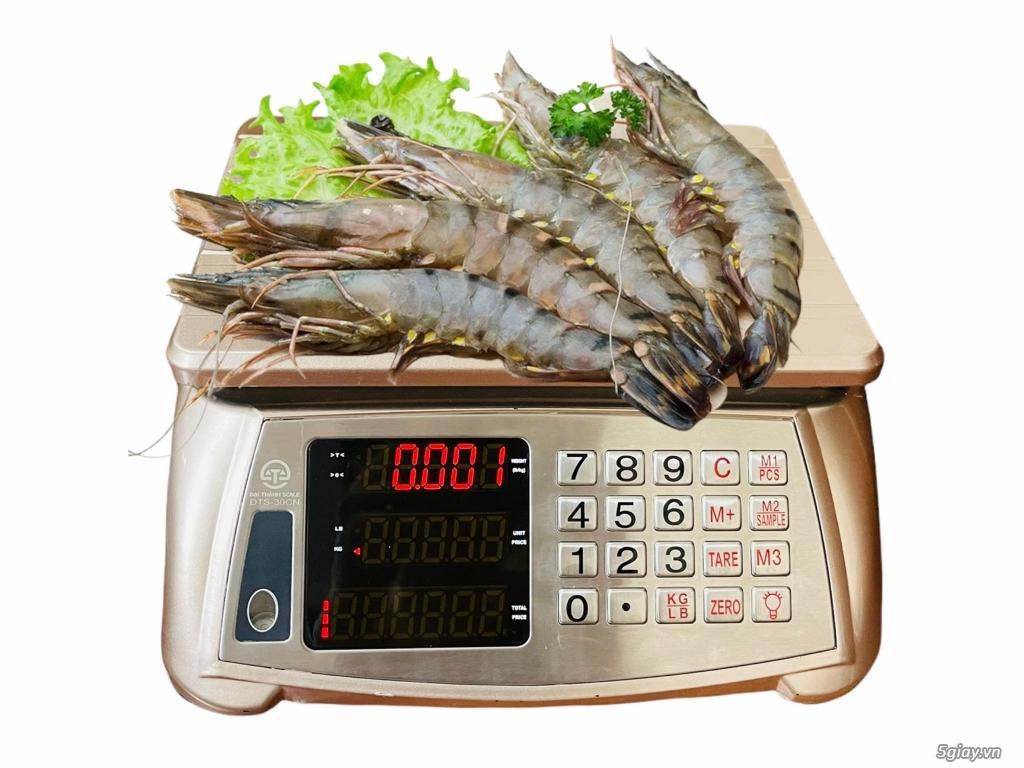 Nơi bán cân điện tử dùng cân hải sản chính hãng tại Hà nội