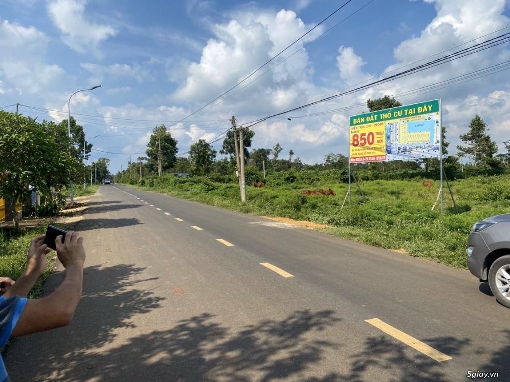 MT Ngã Giao Quảng Thành liền kề trường học đầu tư cực hot!!! - 9